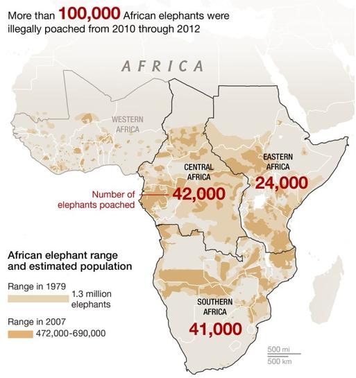 Statystyki zabitych słoni w Afryce w latach 2010-2012